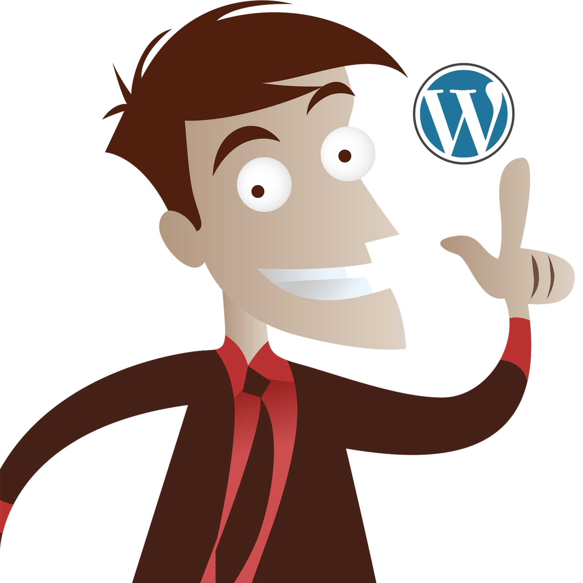 I will create low cost wordpress Blog site for you