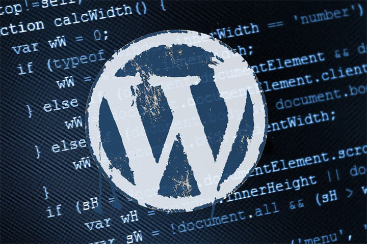 Security measures against Hacking for WordPress website