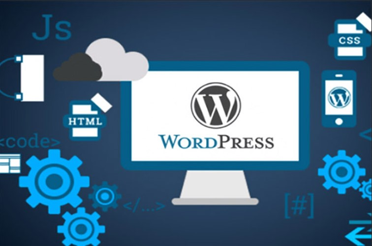 I will design a professional responsive wordpress e-commerce website