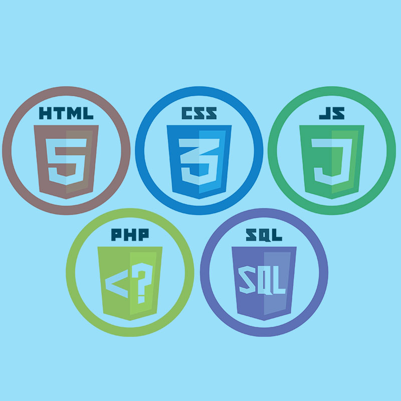 Developing professional websites with PHP/MYSQL/CSS/JAVASCRIT/HTML