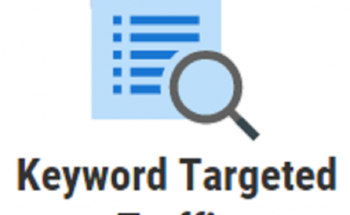 Drive 1000 Keyword Targeted Google Organic Traffic