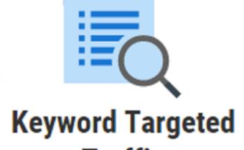 Drive 1000 Keyword Targeted Google Organic Traffic