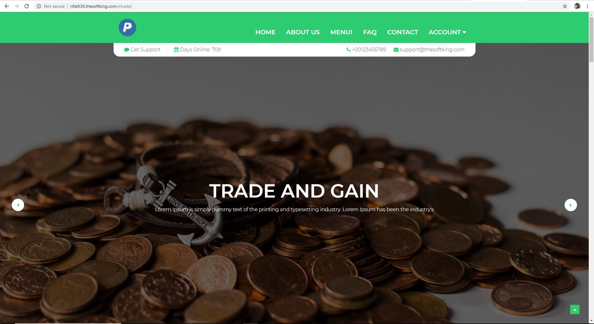 E-Trader Website Full Site for Online Trading Platform