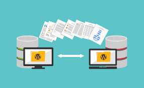 migrate your 10 wp site to new host/domain