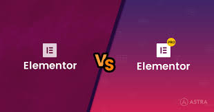 I will install elementor pro on your wp website and 1 free premiere theme of your choice