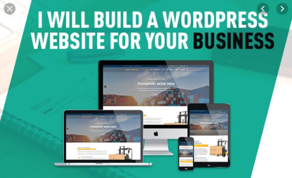 i will build professional wordpress website for you