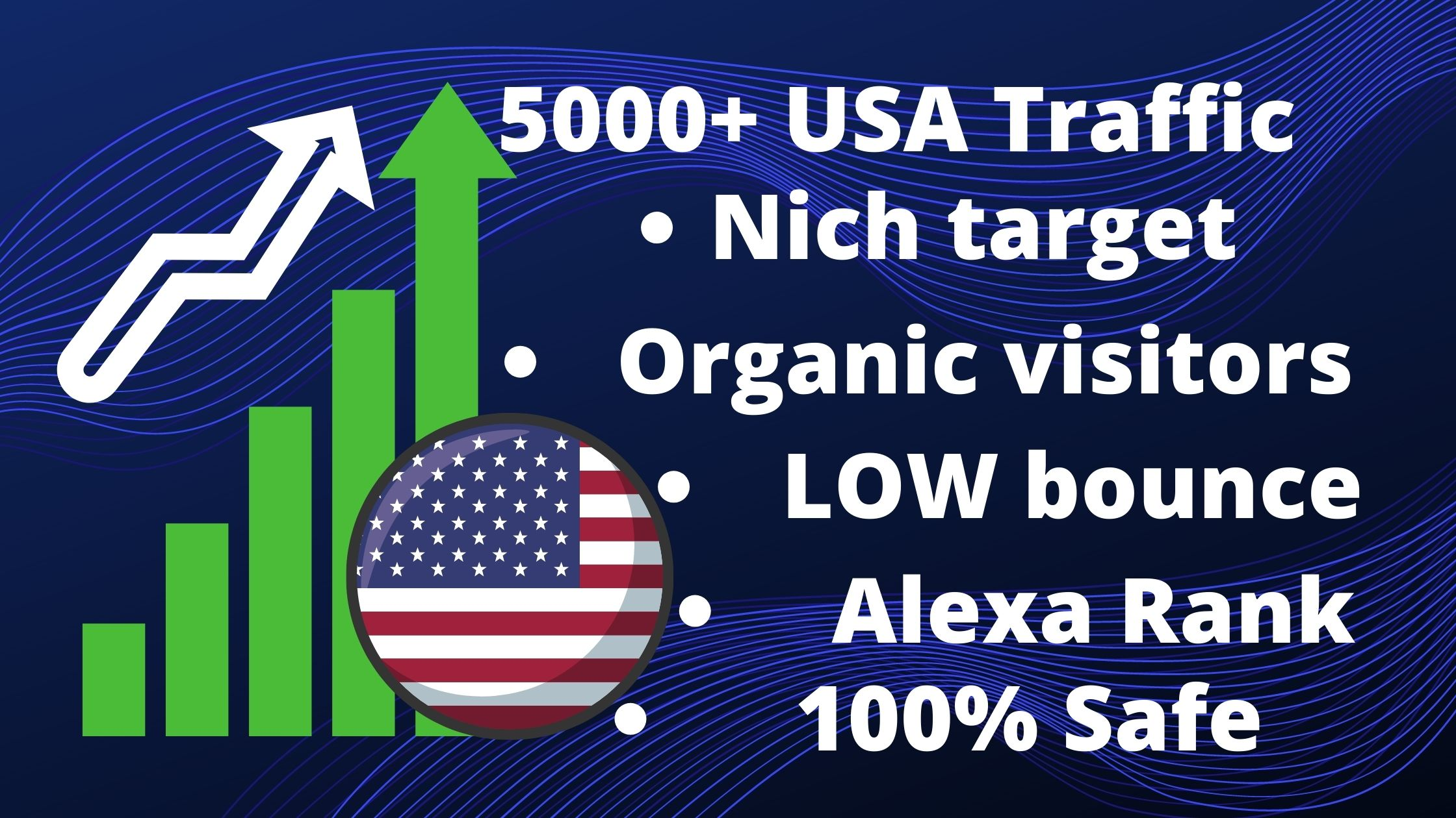 5000 plus Nich Target Real USA unique visitors Traffic for your website