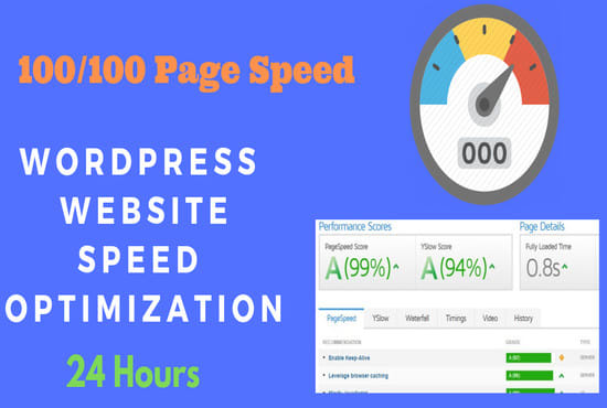 wordpress speed optimization and speed up in 24 hours