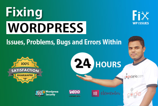 I will fix website errors, elementor bugs, woocommerce errors within 24 hours