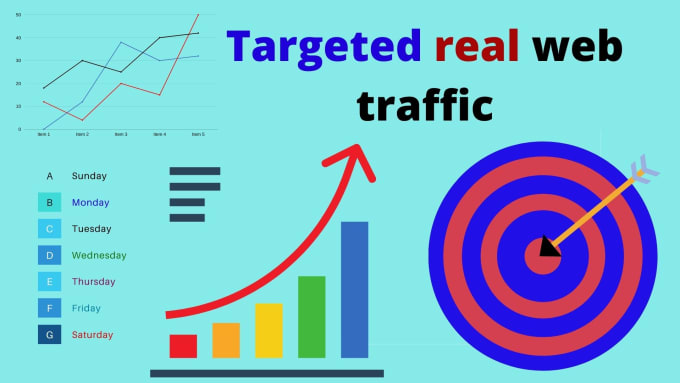i will drive 7000 real USA web traffic for your web site