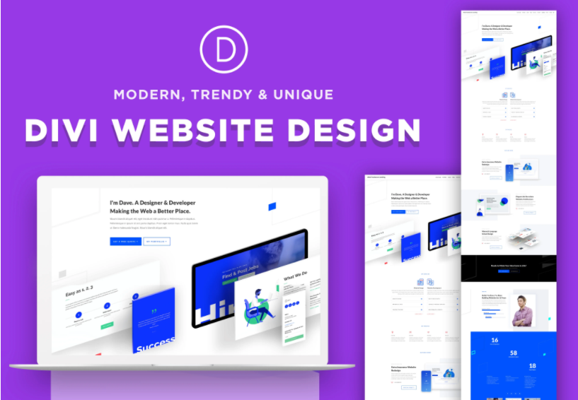 I will design and build unique divi wordpress website