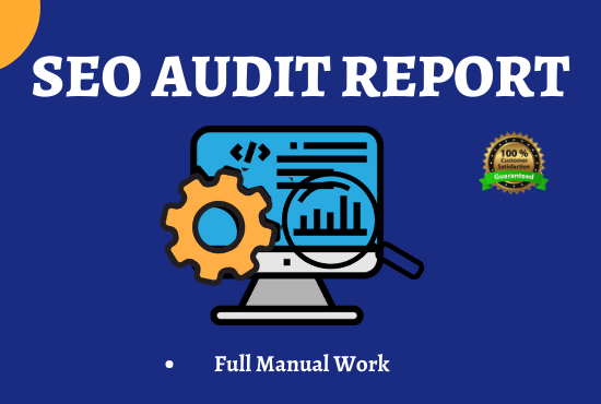 Fully Manual SEO Audit for Your Website