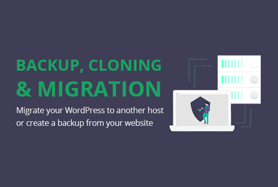 wordpress website backup,  migrate,  or clone