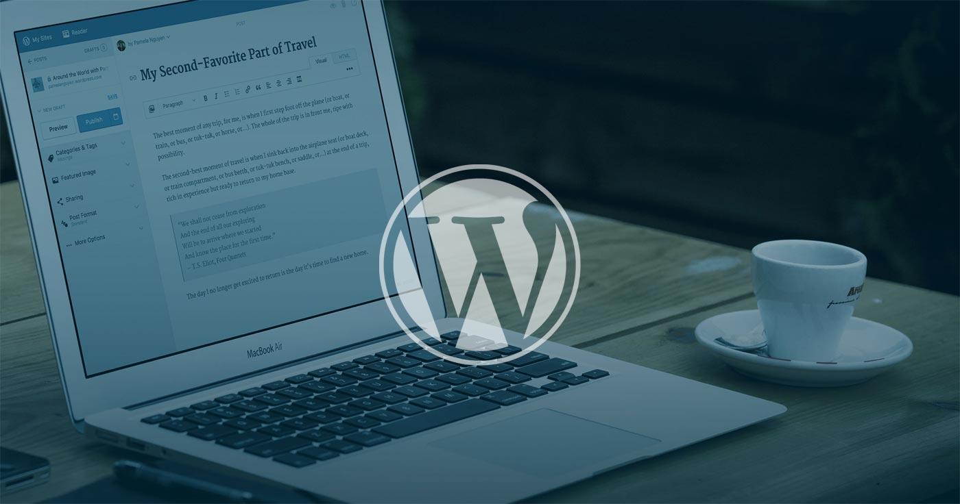 I will do website development and be your wordpress developer