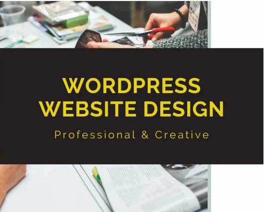 I will create any type of wordpress website design