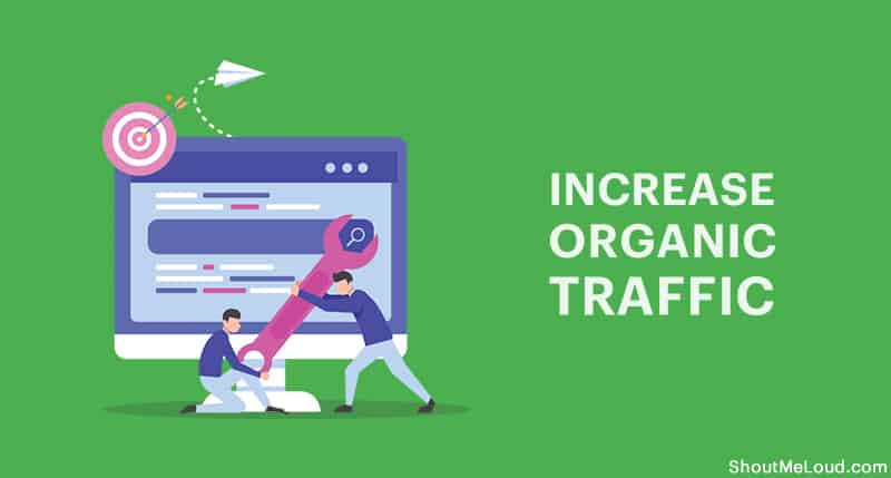 Organic SEO traffic daily 1000 for a month