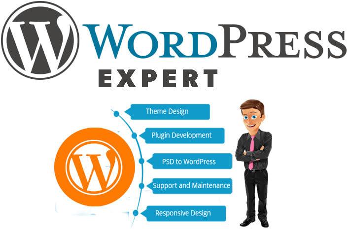 Develop WordPress Website With Your Design