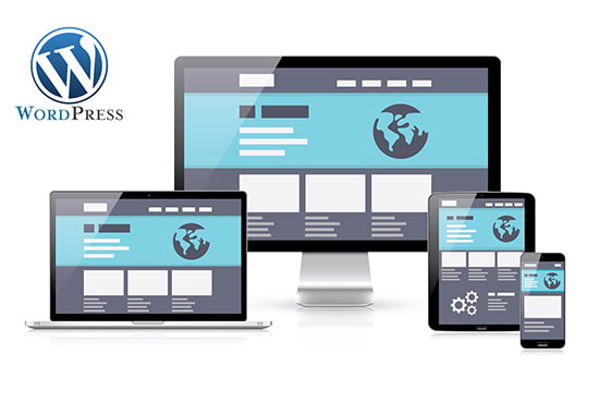 I will develop a wordpress website or wordpress website design