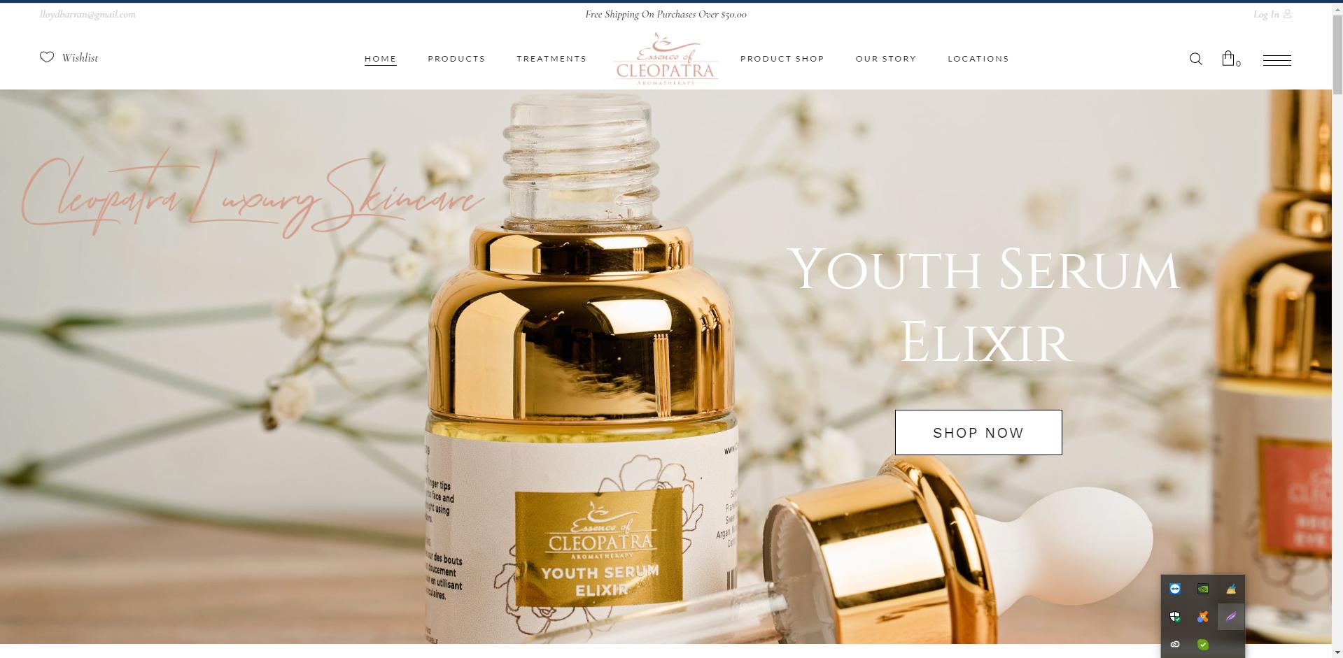 I will create Professional WordPress website with SEO Optimize