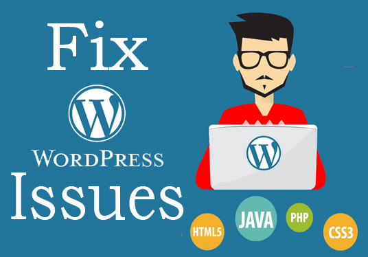 I will fix any type of wordpress errors in 2 hours