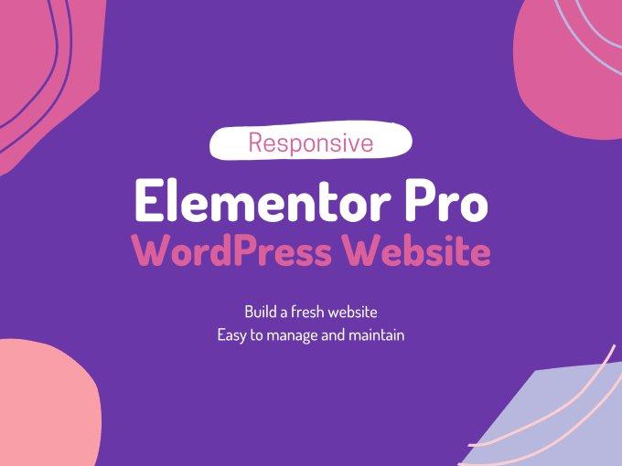 I will create a premium wordpress website using elementor pro