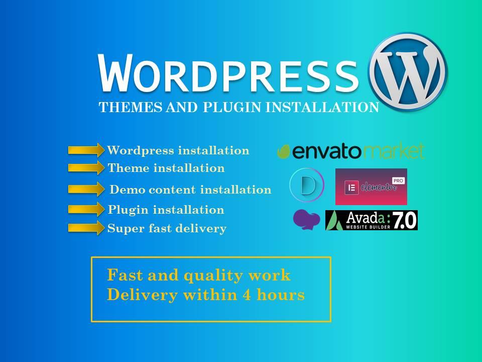 I will install wordpress setup theme and plugin,  do customization