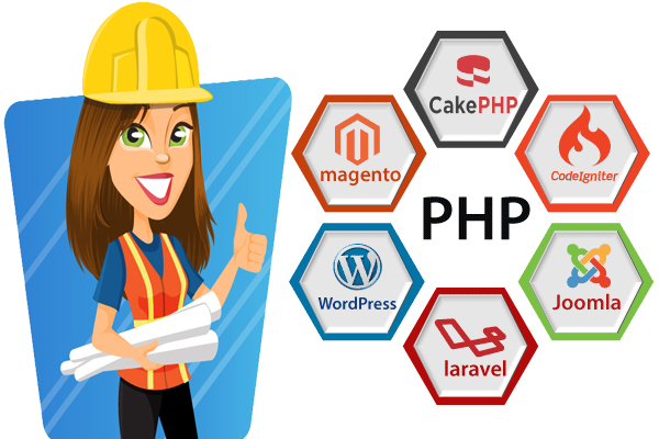 I will install any codecanyon script on your web server