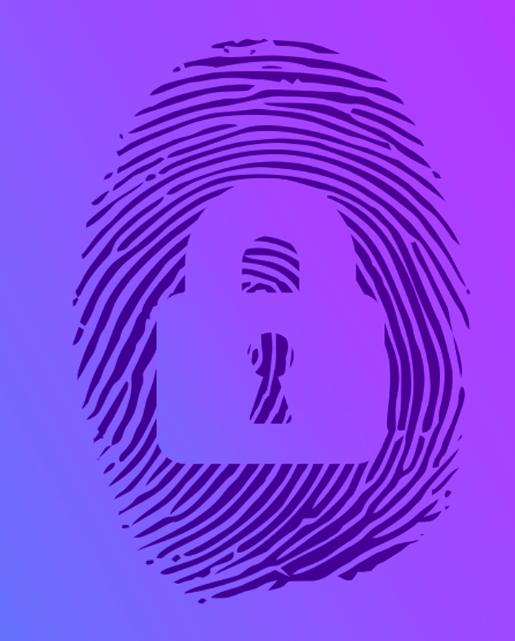 Antidetect browser system based on mozila