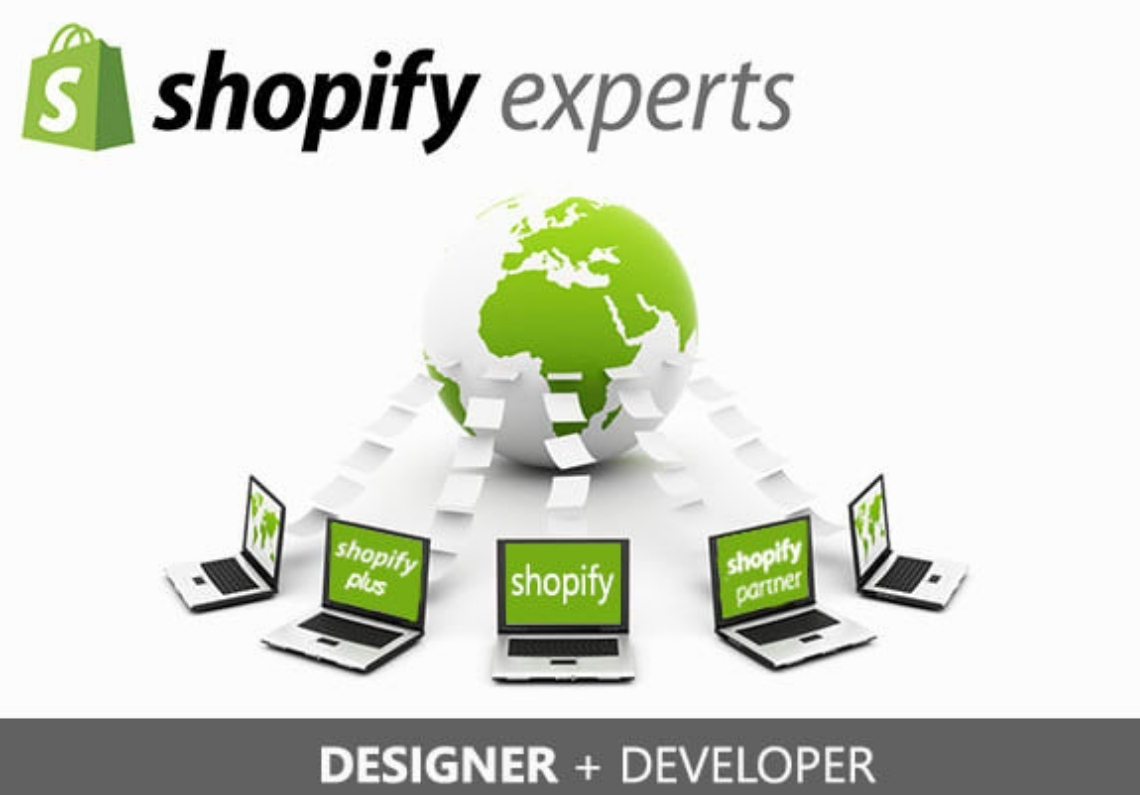 I will design and develop a professional shopify store for you