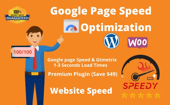 I will do wordpress website speed optimization with google pagespeed, gtmetrix and pingdom