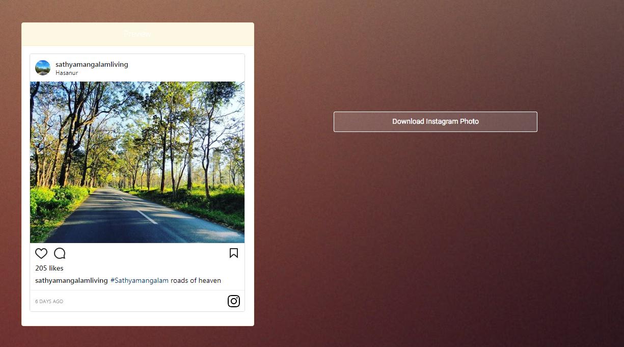 Downloader Insta - Instagram Photo Downloader PHP