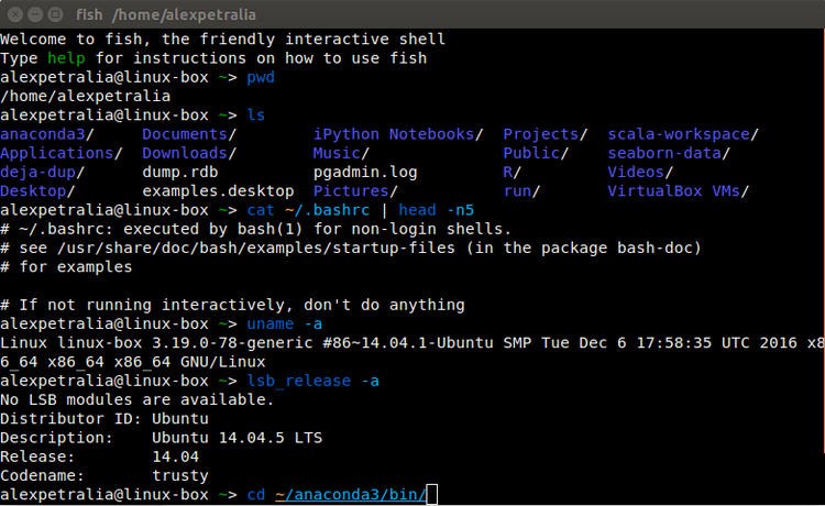shell scripting,  bash scripts,  csh and ksh scripts