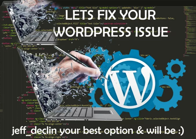 Fix Wordpress Issues Or Wordpress Errors In 12 Hrs