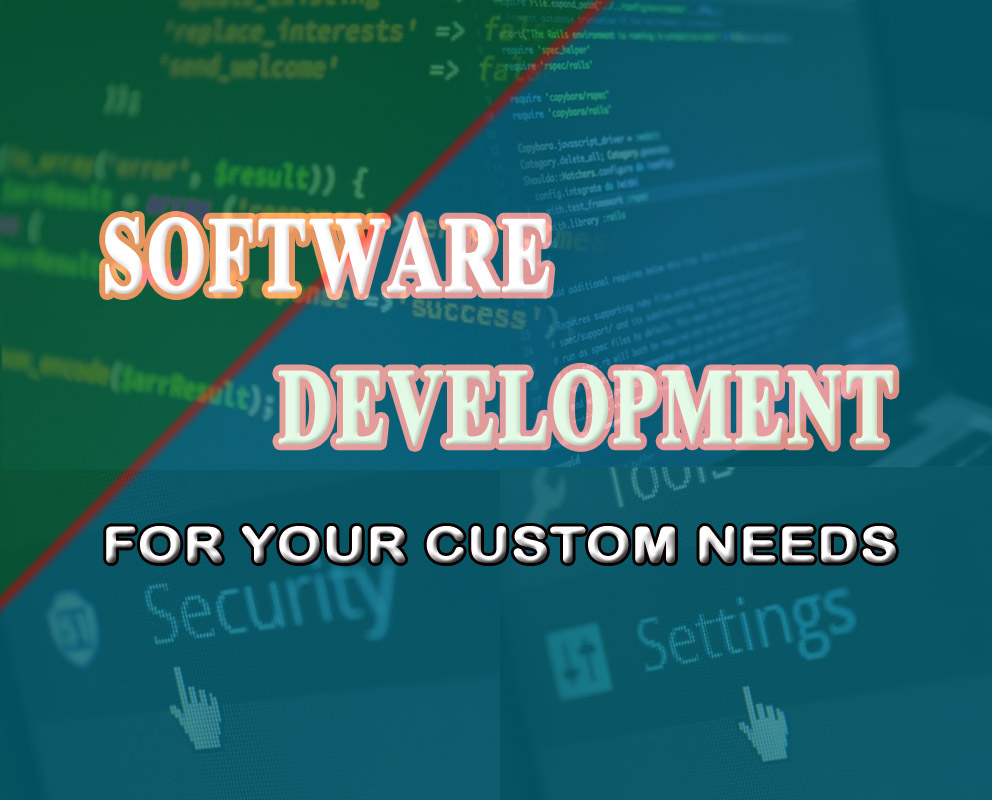 Creating a custom software for your website or project