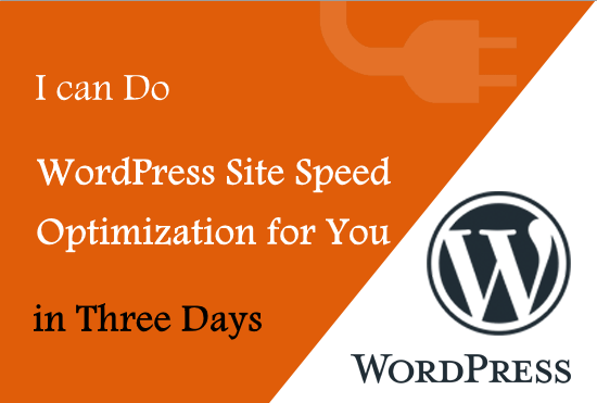 WordPress Site Optimization for Speed