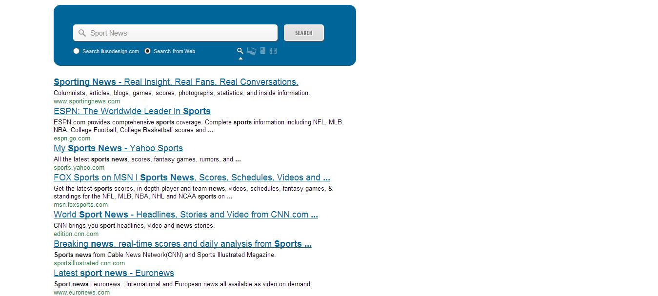 Custom Site Search