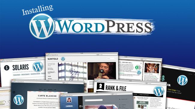 install Wordpress plugins and themes