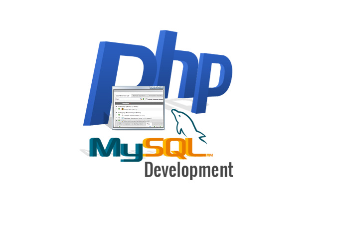 I can do any php related work