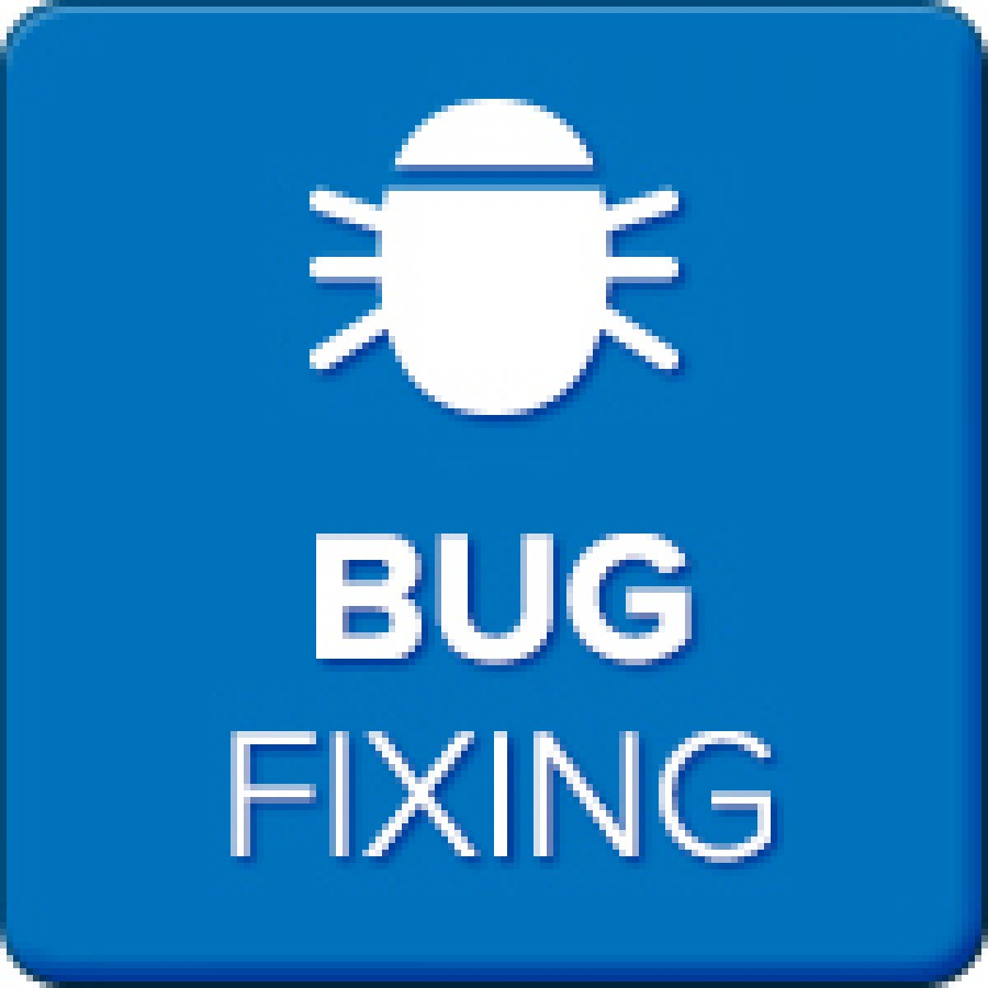 Its Time Fix Your WebSite Bugs