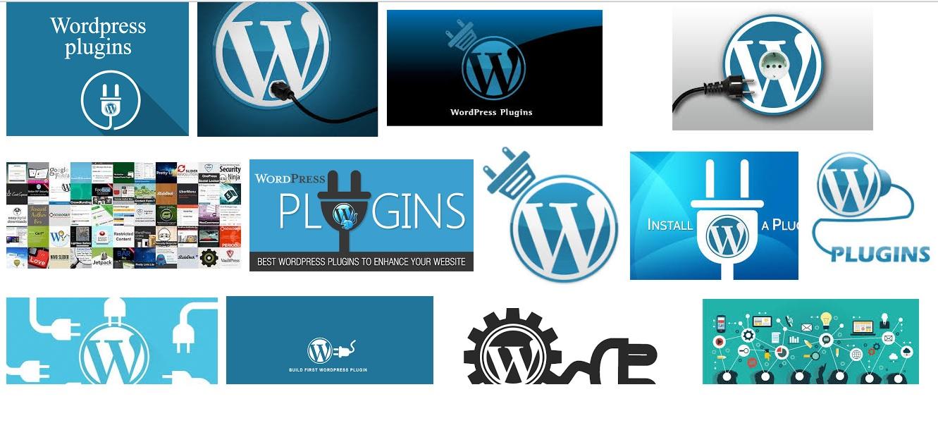 WordPress Plug In Installation