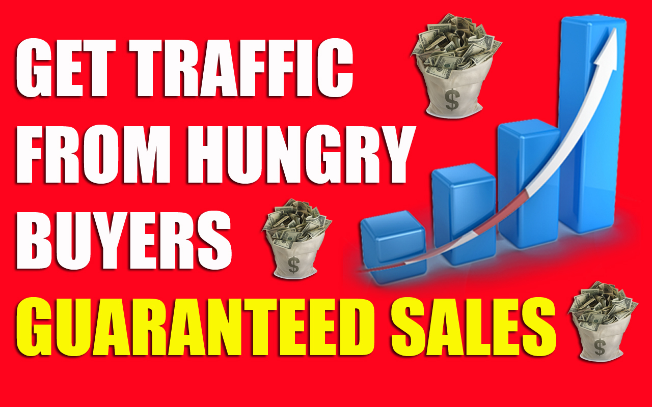 Drive unlimited real traffic to your website For 60 Days