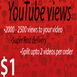 2000 - 2500 views to your Youtube video Super Fast delivery