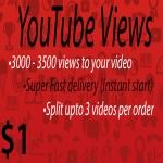 1000 views to your Youtube video Super Fast delivery