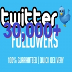 I will give you 30000+ Twitter Follower