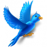 Provide you 5000+ Twitteer Permanent HQ Followers just