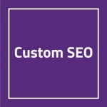 Custom SEO Monthly Package No Blogs
