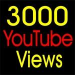 3000 Youtube Video Views