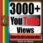Fast 2500-3000+ Non Drop High Quality Adsense Safe and Life Time Guaranty Views for Your Video