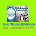 Get Google TOP Ranking Booster Penguin,  Panda & Hummingbird Safe SEO Pack
