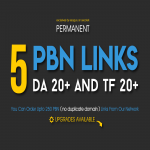 Permanent 5 PBN Links - DA 20+ and TF 20+